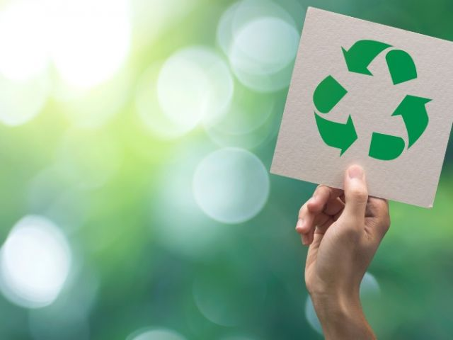 Estilo de vida verde: ¿qué ventajas tienes al aplicarlo?