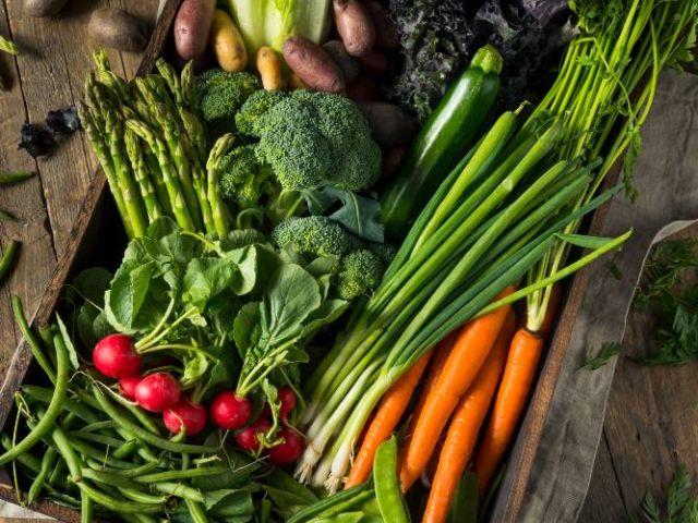 ¿Cuáles son las legumbres con más proteínas?