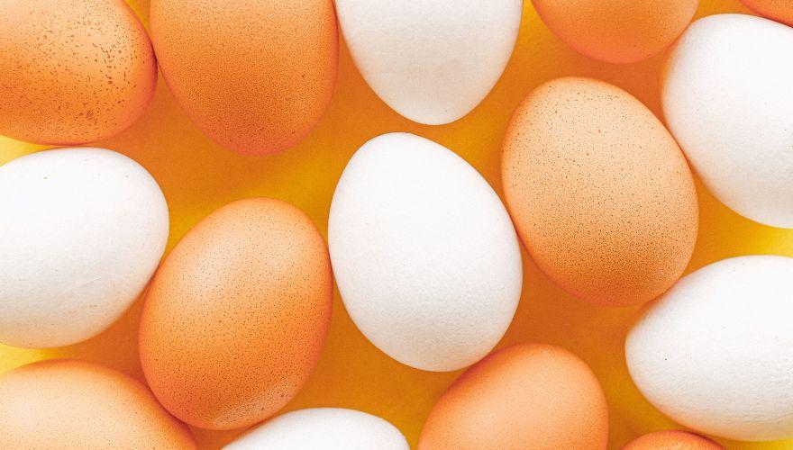 Alimentos con vitamina D: conoce cuáles son