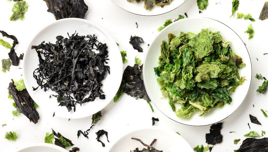 Algas comestibles: qué son y cómo consumirlas